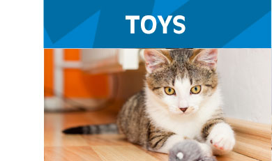 Toys-Cats