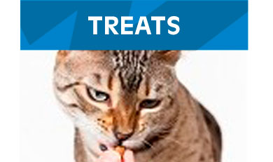 Treats-Cats