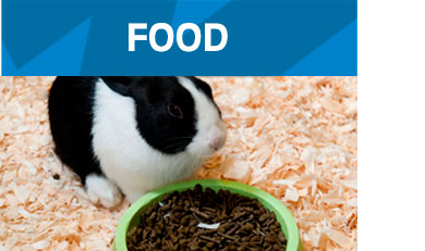Food-Small-Animals