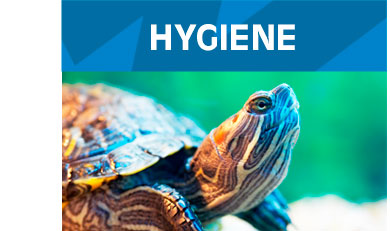 Hygiene-Small-Animals