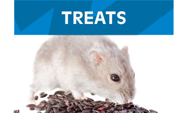 Treats-Small-Animals