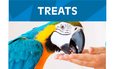 Treats-Birds