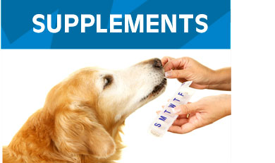 Supplements-Dogs
