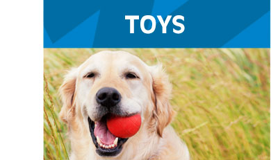 Toys-Dogs